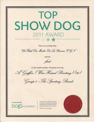 21_Flash_Top_Show_Dog_2011_001.jpg