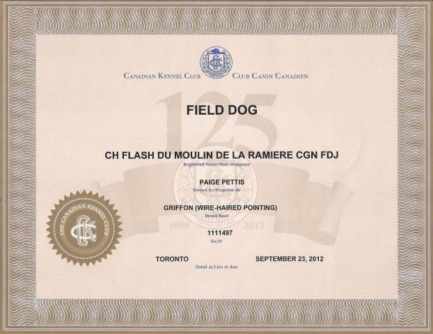 Flash_FD_Certificate_001.jpg